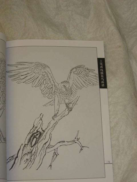 Birds Flowers Drawing Flower/bird Drawing Book-birds