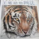 Tiger-唐青